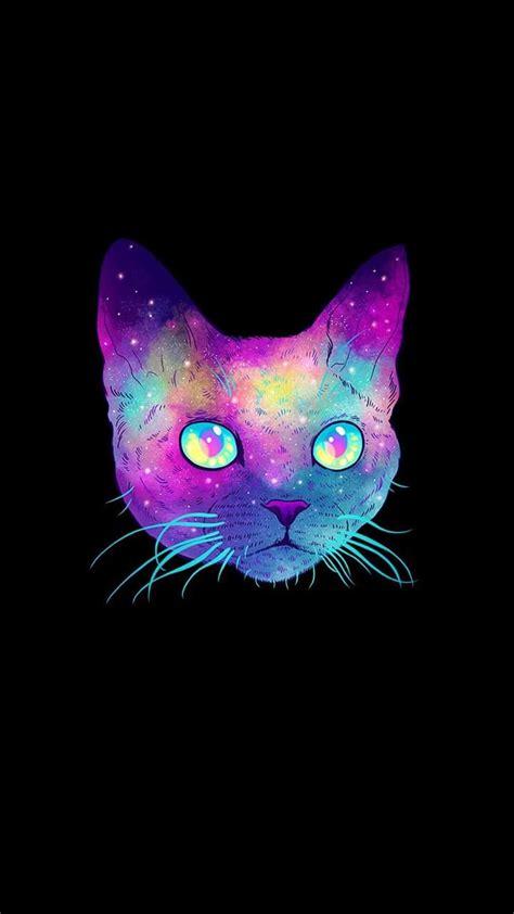 imágenes para whatsapp reflexión im 225 genes de gatos para fondo de pantalla del celular