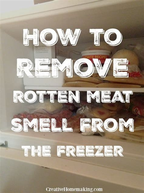 how to get rotten smell out of freezer removing rotten smell or odor from the freezer