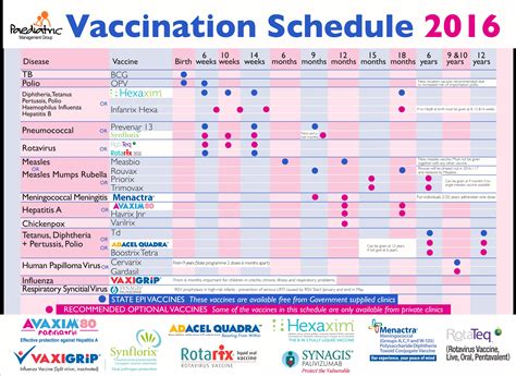 vaccination schedule chart pin medicine chart on