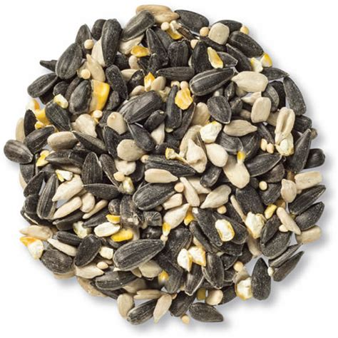 duncraft com cole s blue ribbon bird seed blend