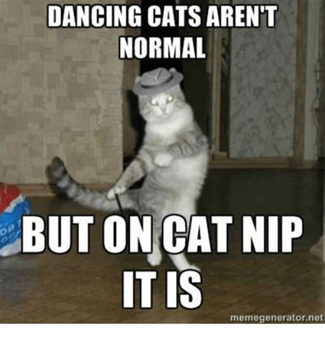 Dancing Cat Meme - 25 best memes about dancing cat dancing cat memes