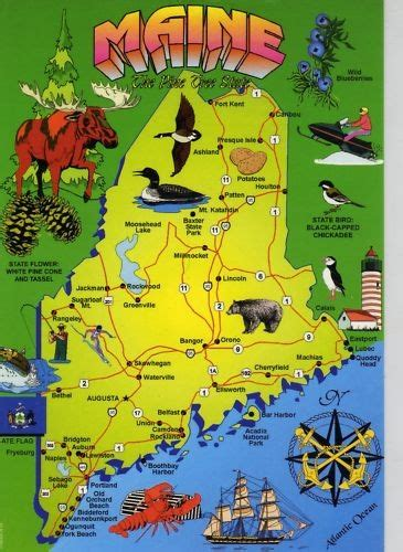 2463 best images about maine on pinterest