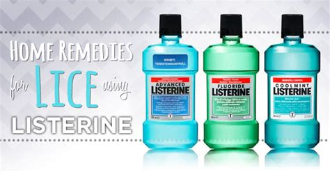 listerine lice treatment at homehome remedies that really work
