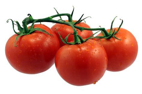 The Tomato by Tomatoes In Verti Gro 194 174