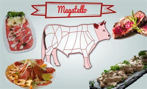 come cucinare il magatello di manzo magatello di manzo e di vitello caratteristiche carne e