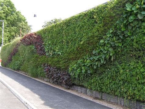 garden wall green walls lewes