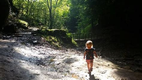 mineral springs picture of raccoon creek state park