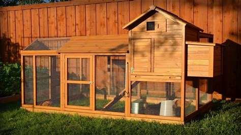 building  chicken coop kit  additional modifications