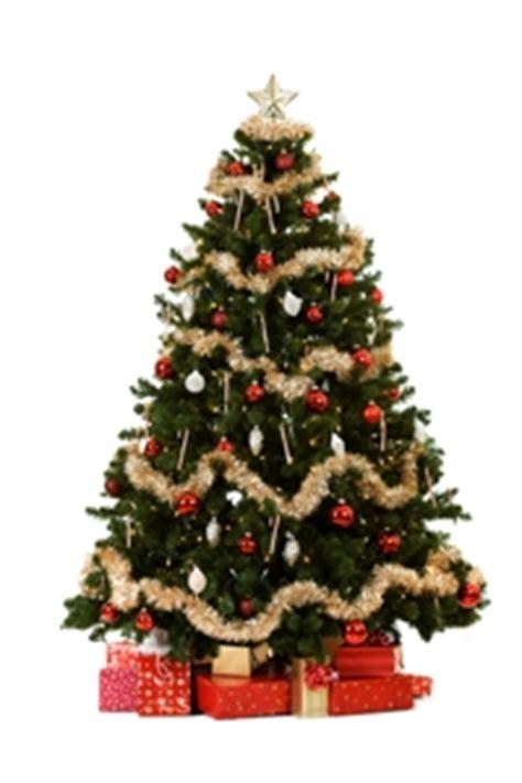tipp tannenbaum online kaufen