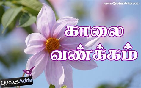 best tamil morning quotes with images www morning quotes wallpapers in tamil tamil