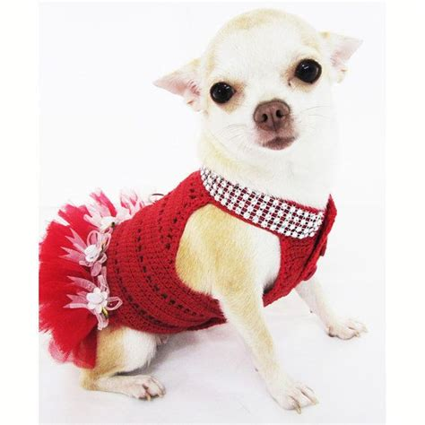 teacup puppy clothes best 25 chihuahua clothes ideas on pet clothes buy a kitten and chihuahuas
