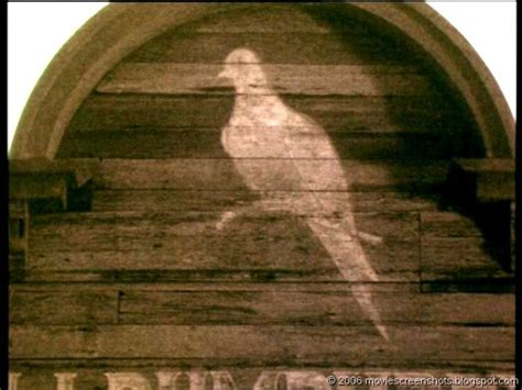 nedlasting filmer lonesome dove gratis movie screenshots lonesome dove 1989 movies i love