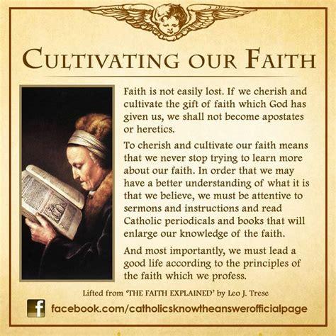 catholic faith education newsletter october 28 october 2012 catholic teachings 2 pinterest