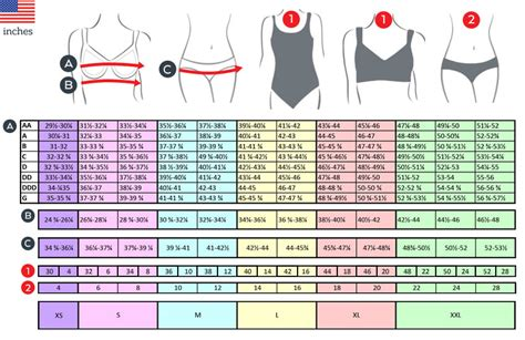 Bra Size Chart and swimwear measuring guide bra sizing guide