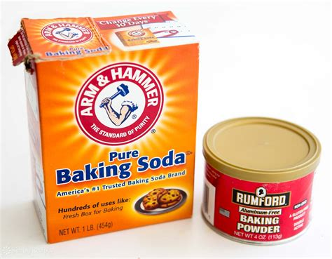 baking sofa the difference between baking soda and baking powder
