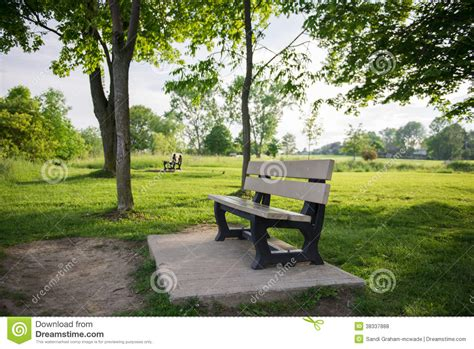 bench in nature park bench in nature area royalty free stock photos