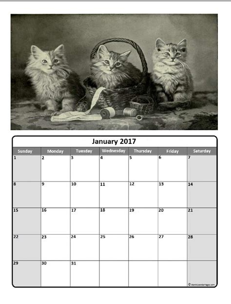 printable kitten calendar january 2018 calendar full year pdf printable