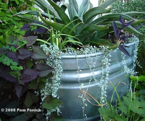 Galvanized Stock Tank Planter by Diy Weekend Project Galvanized Planter The Doodle House