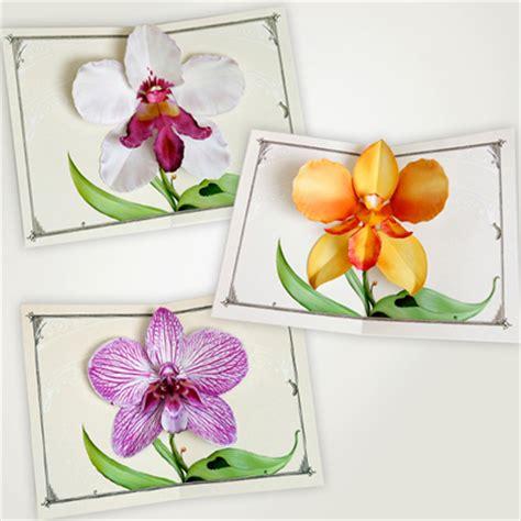 popup flower card template crankbunny orchid flower pop up card