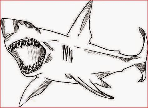 free shark mask coloring pages