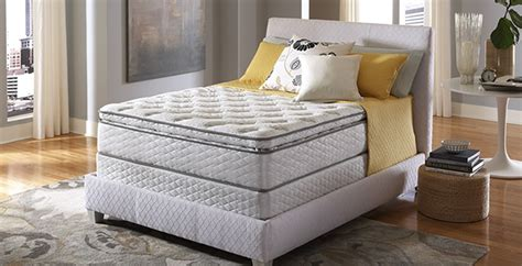 five star mattress pro comfort collection fivestar procomfort tahoe furniture company