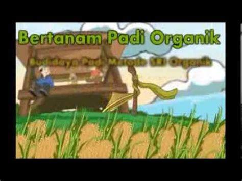 gambar animasi kebun jagung