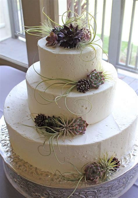 Wedding Cake With Succulents by Succulent Wedding Cake A Hundred Succulent Cakes