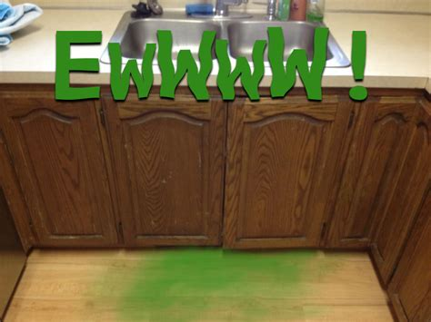 how to remove odor from wood cabinets getting rid of the musty smell from your cabinets n