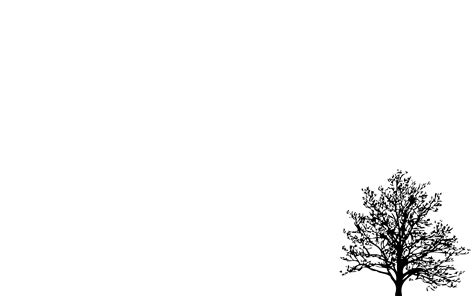 simple wallpaper pinterest minimalistic simple background trees white background