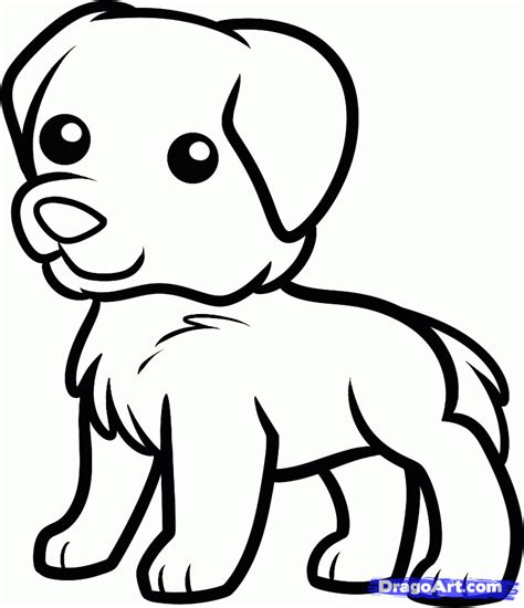 how to draw a golden retriever easy how to draw a golden retriever for step by step animals for for