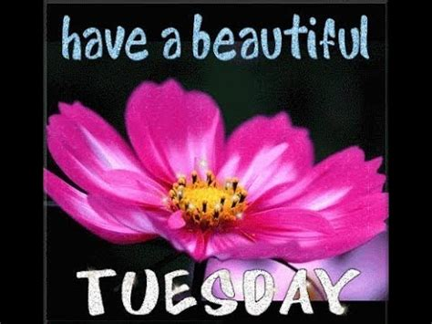 Tuesday Greeting Cards