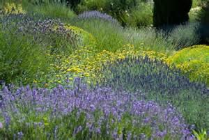 un jardin bleu pour les