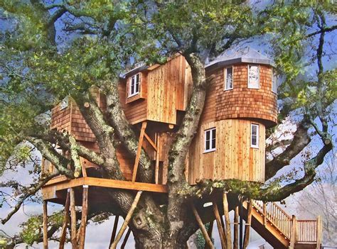 tree homes 13 treehouses you will not believe exist