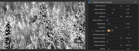final cut pro black and white better black white plugin for final cut pro x
