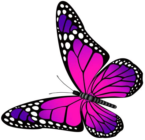 Farfalle Clipart Pink Butterfly Clipart 101 Clip