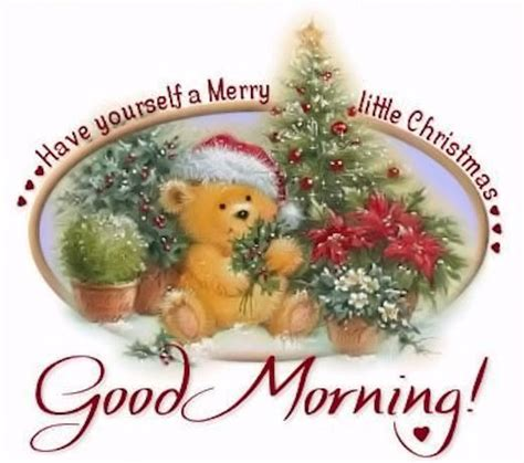good morning    merry  christmas pictures   images  facebook