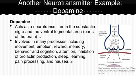Ppt The Nervous System Neurotransmitters By Josephina