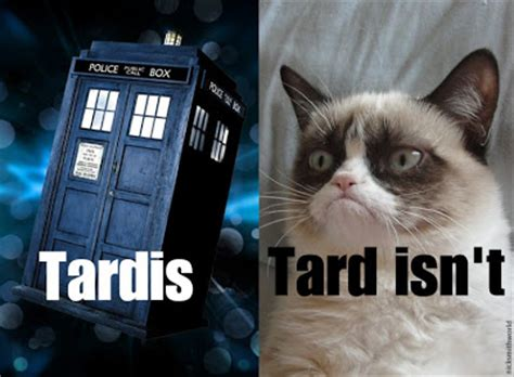 Doctor Who Cat Meme - grumpy cat the rock n roll years grumpy cat meets dr who