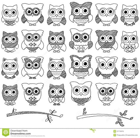 doodle draw owl doodle style vector set of owls royalty free stock