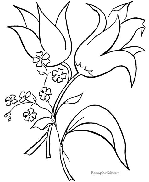 tropical flower coloring pages coloring home