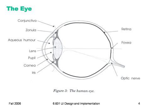 blank eye diagram diagram of the eye diagram site
