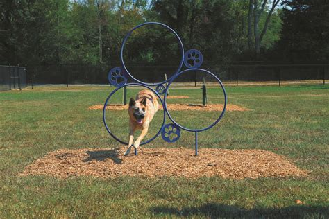puppy playground equipment 301 moved permanently