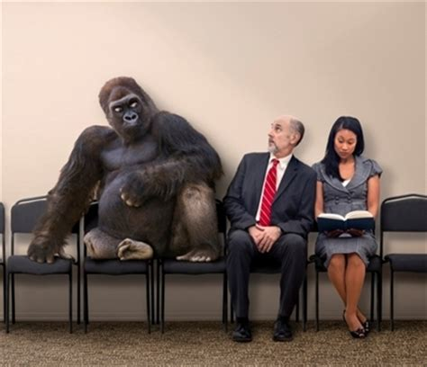 gorilla in the room the 800 pound gorilla in the room continuummm coaching executive coaching emotional