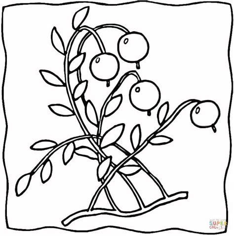 grape leaves coloring pages grape leaves coloring page coloring coloring pages