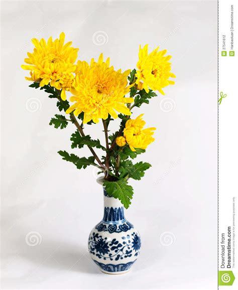 chrysanthemum flower vase stock photo image of leaf