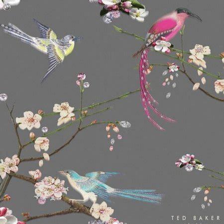 Photo Collection Ted Baker Desktop Wallpaper