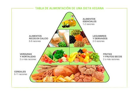 piramide alimentare vegana pir 225 mide alimenticia de la dieta vegetariana hogarmania