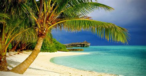 s day special cheap flights to punta cana republic from miami fl for 184