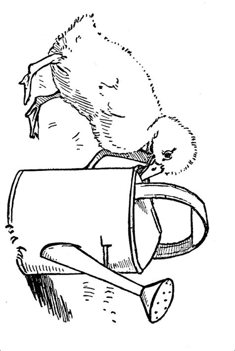 duck hatching coloring page free coloring pages of duck hatching