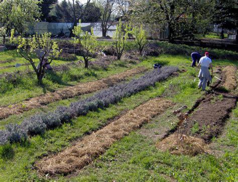 » Libero Orto, l?orto comunitario Il Giardino degli Aromi